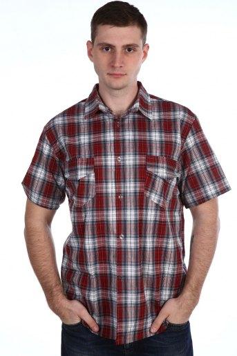 Рубашка 51502 (N) (Ассорти) (Фото 2)